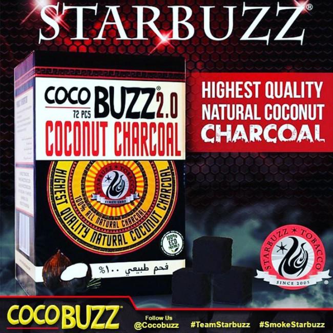Cocobuzz2